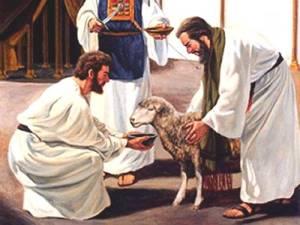 """Jesús es """"El Cordero"""""""