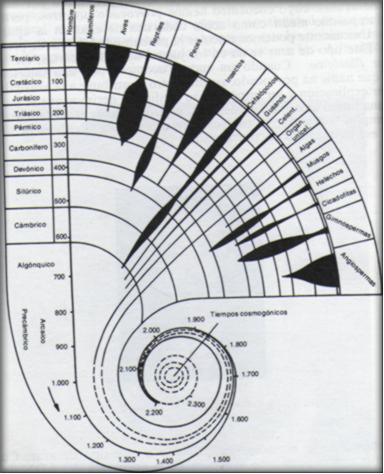 evolucion-antropologica-filosofica