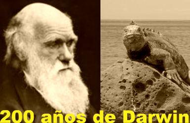 darwin10buena
